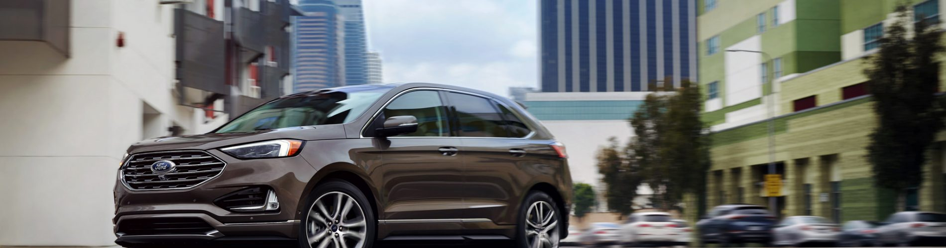 New Year's goals - 2019 Ford Edge